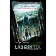 Labirintul. Evadarea. Ed.2015 - James Dashner