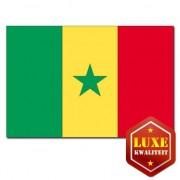 Bellatio Decorations Feestartikelen Vlag Senegal