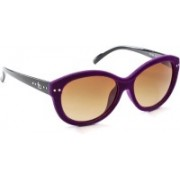 French Connection Cat-eye Sunglasses(Grey, Violet)