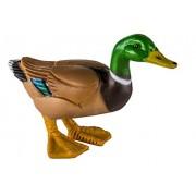Safari Ltd Duck
