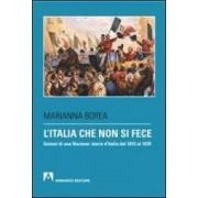 Marianna Borea L'Italia che non si fece. Genesi di una nazione: storia d'Italia dal 1815 al 1870 ISBN:9788866772736