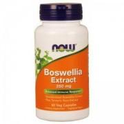 Босвелия - Boswellia Extract - 60 капсули - NOW FOODS, NF4613