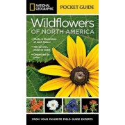 National Geographic Pocket Guide to Wildflowers of North America, Paperback