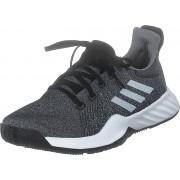 adidas Sport Performance Solar Lt Trainer M Core Black/ftwr White/grey Thr, Skor, Sneakers och Träningsskor, Sneakers, Svart, Grå, Herr, 43