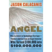 Angel: How to Invest in Technology Startups--Timeless Advice from an Angel Investor Who Turned $100,000 Into $100,000,000, Hardcover