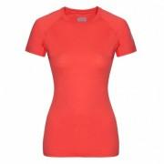 ZAJO | Elsa Merino W Tshirt SS L Coral