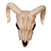Crazy Bonez - Ram Skull