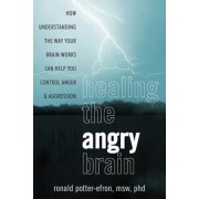Healing the Angry Brain: How Understanding the Way Your Brain Works Can Help You Control Anger and Aggression, Paperback