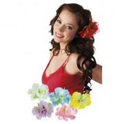 Geen 5x stuks Hawaii haarbloemen op clip
