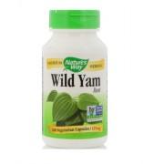 Wild Yam mexikói vad jamgyökér kapszula, 180 db