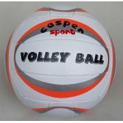 Волейболна топка различни цветове