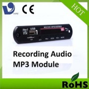 Medha VTF 108REC Stereo Music Audio Kit/module with Voice Recording FM USB Card Remote