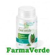 Ceai Verde Extract 100 mg 30 capsule Rotta Natura