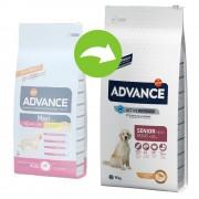 15kg Advance Maxi Senior con pollo pienso para perros