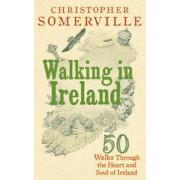 Wandelgids Walking in Ireland | Ebury Press
