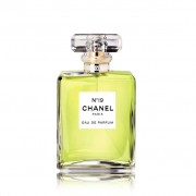 Chanel No 19 Eau Parfum Spray 50 Ml
