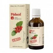 Tinctura Paducel fara Alcool Dacia Plant 50ml