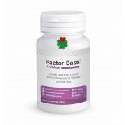 OKG Factor Base AntiAge 60 tbl. ( proti projevům stárnutí )