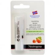 Neutrogena Norwegian Formula® Nordic Berry balsam de buze 4,8 g