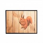 Blancheporte Tapis anti-poussière motif écureuil 40X60