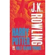 Harry Potter and Half Blood Prince Adult