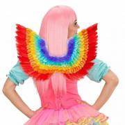 Geen Luxe regenboog veren vleugels 52 x 40 cm