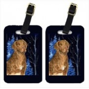 Caroline's Treasures SS8384BT Starry Night Chesapeake Bay Retriever Luggage Tag(Multicolor)