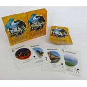 Tennessee souvenir playing cards, vacation gift. card faces feature Multiple Landmarks, Oustsanding Tourist Gift, two deck set . by Shopitivity LLC