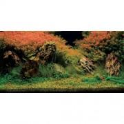Aquatic Nature Foto Achterwand Inferno 80 x 40