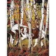 Heavenly Horses 300 Piece Puzzle - Hideaway Horse