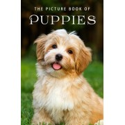 The Picture Book of Puppies: A Gift Book for Alzheimer's Patients and Seniors with Dementia, Paperback/Sunny Street Books