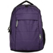 American Tourister Cyber C2L 18.228 L Medium Laptop Backpack(Purple)