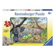 Puzzle Animale Safari, 60 piese