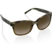 DKNY Wayfarer Sunglasses(Brown)