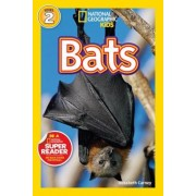 Bats, Paperback