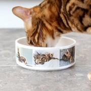 smartphoto Matskål husdjur