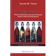 Kombucha. Plante medicinale care pot fi folosite pentru ceaiul de kombucha