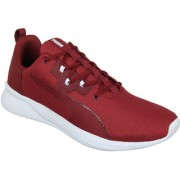 Puma Men'S Tishatsu Runner Pomegranate-Puma White White Sports Shoe