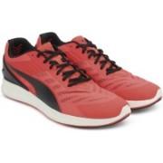 Puma IGNITE v2 Running Shoes For Men(Orange)