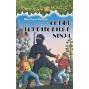 Codul luptatorilor Ninja. Portalul magic nr. 5