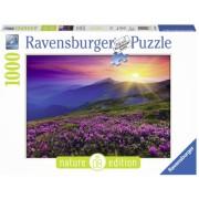 Puzzle Pasune La Rasarit, 1000 Piese Ravensburger
