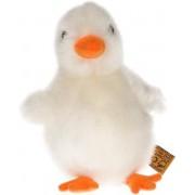 Pluche witte kuiken knuffel 12 cm speelgoed - kuiken boerderijdieren knuffels - Paaskuiken speelgoed - Paasdecoratie/paasversiering