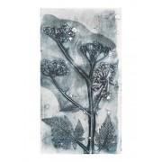Werk aan de Muur Schilderij Botanische planten en bloemen afdruk Fluitenkruid (gezien bij vtwonen) - Aluminium Dibond - 55x75