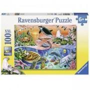 Детски пъзел - Красив океан - 100 елемента, Ravensburger, 7010681