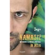 Namaste: un roman de aventuri spirituale in India/Sega