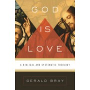 God Is Love - A Biblical and Systematic Theology (Bray Gerald L.)(Cartonat) (9781433522697)