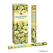 Bețișoare parfumate HEM - Frangipani
