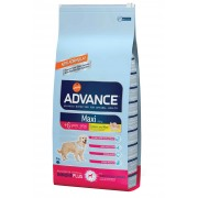 Advance Maxi Senior Pollo y Arroz