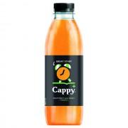 Cappy+ Great Start Multifruit 0,8 L