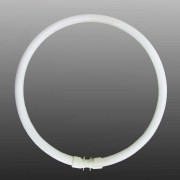 2GX13 T5 40W fluorescent ring, cool white